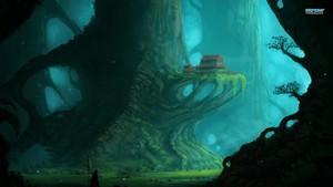 树 Homes