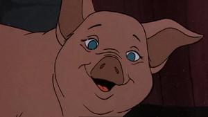 Wilbur Screenshots