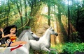 Wonder Woman riding on her white steed to capture and tame a beautiful wild unicorn - wonder-woman fan art