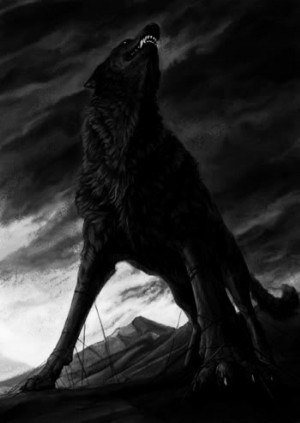 black 狼, オオカミ
