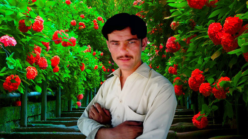 Шахид Африди Обои possibly containing a flowerbed and a business suit called parachinar asim tanha