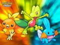 pokemon emerald - pokemon photo