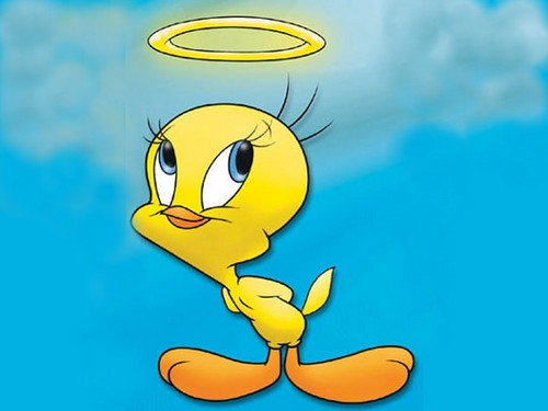 Tweety Bird images titiangefond2 HD wallpaper and ...