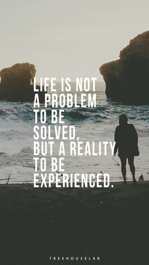 Life is not a problem