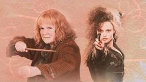 Bellatrix and Molly