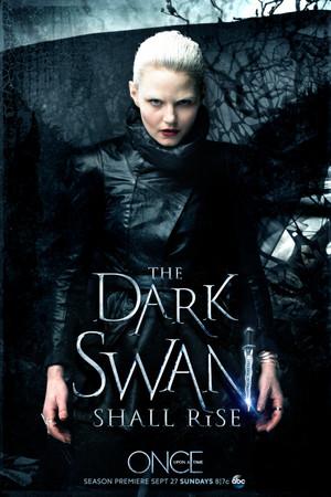 Dark schwan