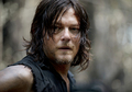 Daryl Dixon  - the-walking-dead photo