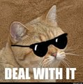 Deal with it B) - lol photo