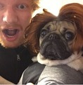 Ed and Doug - ed-sheeran photo