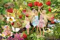 Fairy - fairies photo