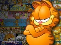 Garfield Sunday comics