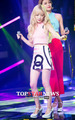 Girl Generation/ SNSD    - girls-generation-snsd photo