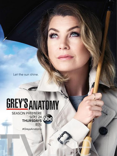 Grey's Anatomy wallpaper possibly with a parasol and a portrait entitled Grey's Anatomy - Season 12 - Promotional Poster