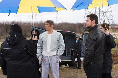 한니발 TV 시리즈 바탕화면 containing a parasol called Hannibal - Episode 3.13 - The Wrath of the 양고기