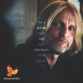 Haymitch Abernathy - the-hunger-games wallpaper