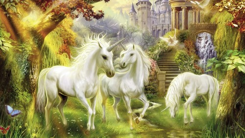 Horses wallpaper containing a lippizan entitled Horses