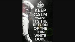 Keep calm thin white duke