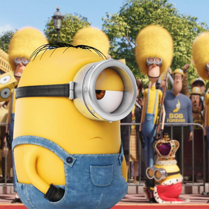 Minions Images King Bob Forever HD Wallpaper And Background Photos