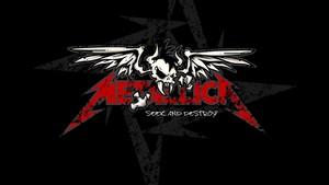 Metallica Skull Logo picha