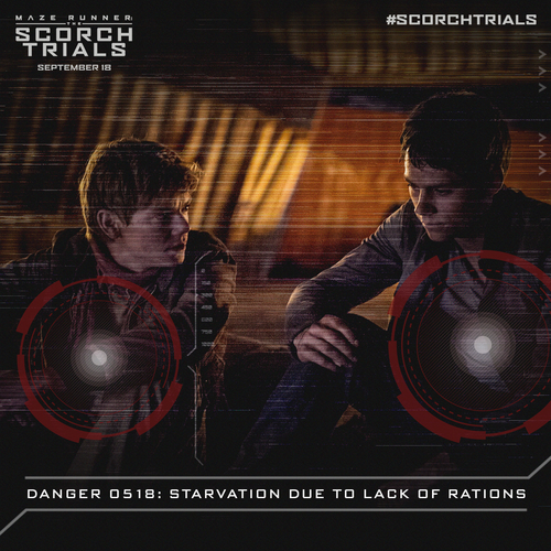 the maze runner images newt and thomas hd wallpaper and