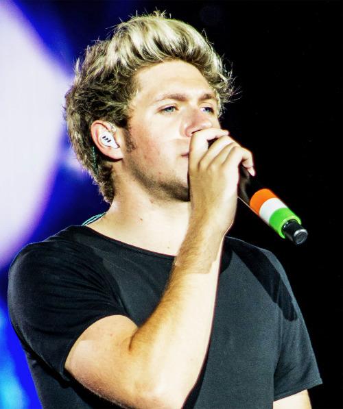 Otra Tour - Niall Horan Photo (38852883) - Fanpop