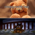 Owning a teddy 곰