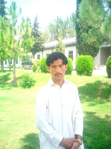 Shahid Afridi fond d'écran containing a live oak titled Parachinar Asim Tanha