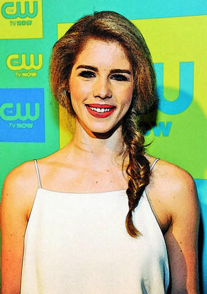 Photo to Painting Emily Bett Rickards