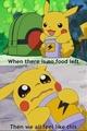 Pokemon - pokemon photo