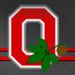 RED BLOCK O ohio state football 24875838