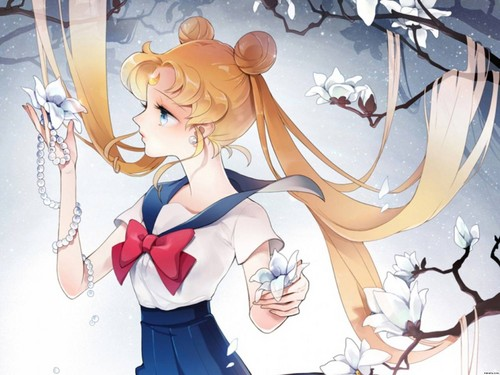 Sailor Moon Crystal fondo de pantalla possibly containing a bouquet called Sailor moon