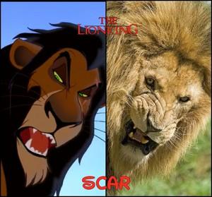 Scar's reality