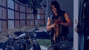 Season 6 ~ Daryl Dixon
