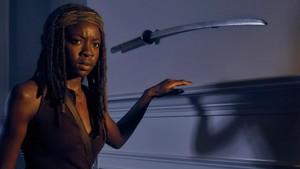 Season 6 ~ Michonne