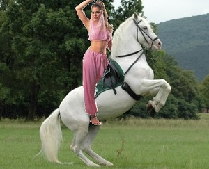 Sexy Belly Dancer riding on her Beautiful Lipizzaner Stallion