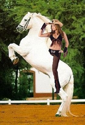 Sexy Cowgirl riding on her Beautiful Lipizzaner Stallion