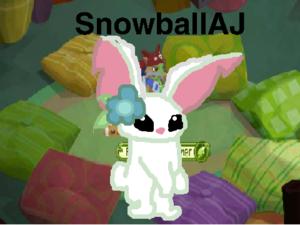 SnowBallAJ