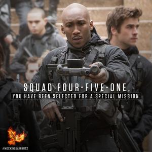 Squad 451