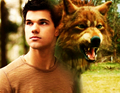Taylor Fan Art - taylor-lautner fan art