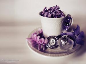 чай cup 💕