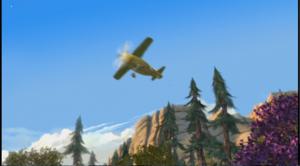 The plane the plane