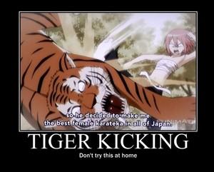Tiger Kicking, still legal in 일본 (& France)