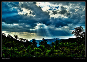 Yercaud scenery