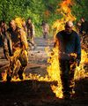 WAKING IN FLAMES - the-walking-dead photo