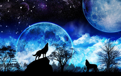 Wolves wallpaper entitled wolves