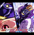 *Mayuri vs Perinda* - bleach-anime photo