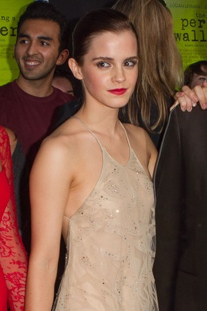 """The Perks of Being a Wallflower"" LA Premiere"