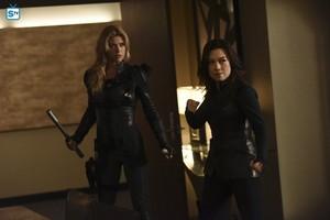 Agents of S.H.I.E.L.D. - Episode 3.06 - Among Us Hide - Promo Pics
