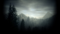 Alan Wake - video-games wallpaper