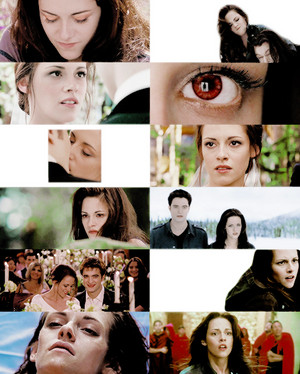 Bella,Twilight Saga